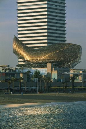 Barcelona_fish